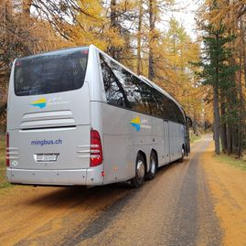 Airport transfers – Coaches – Transport – Ming Bus AG – Sils – Segl Maria – Engadine 5